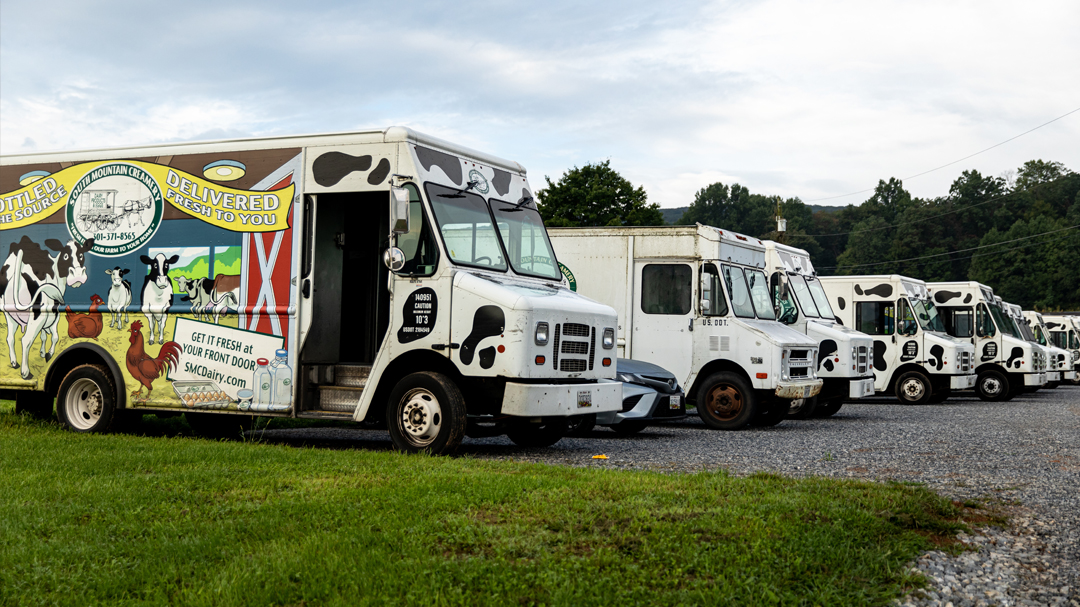 Line up of South Mountain Creamery delivery vehicles in parking lot on the farm